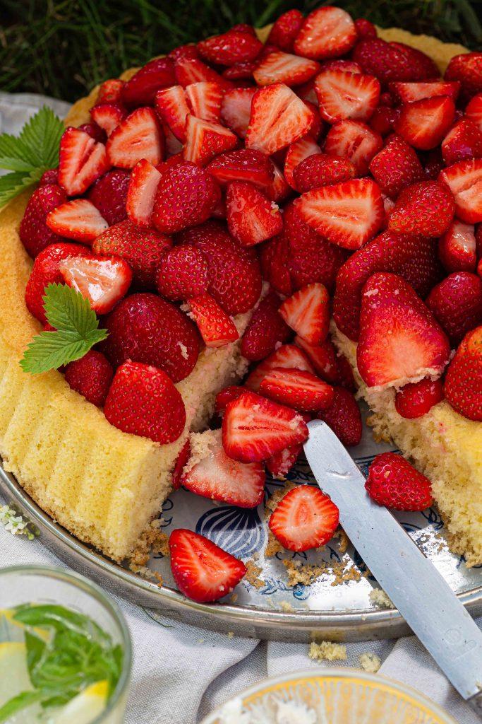 Erdbeerboden mit Wiener Masse | Grundrezept für einen einfachen Biskuit mit frischen Erdbeeren